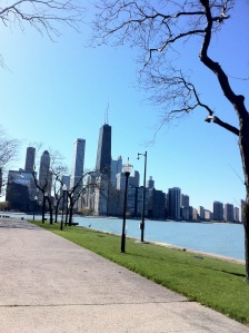 Chicago skyline from the Pfc. Milton Olive Park