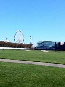 Nice area for a picnic, with a view of the Navy Pier ferris wheel.
