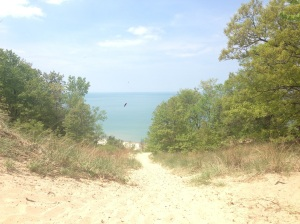 View from the top of the dunes.